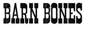 barn-bones